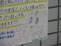 060708-shiriko-tobucchi_1.jpg